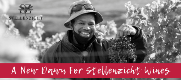 A New Dawn For Stellenzicht Wines